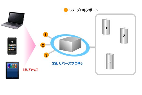reverse-proxy1