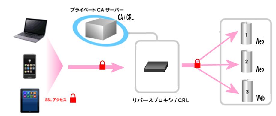 ca-crl-20