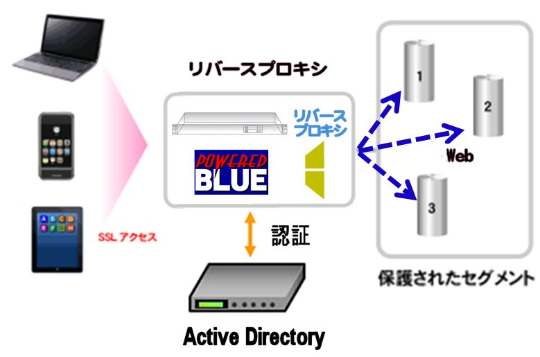 https://www.mubit.co.jp/pb-blog/wp-content/uploads/2020/08/ad-auth-rev-1.png