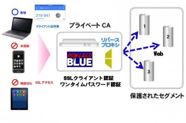 https://www.mubit.co.jp/pb-blog/wp-content/uploads/2020/09/web-ssl-otp-rev-1.png
