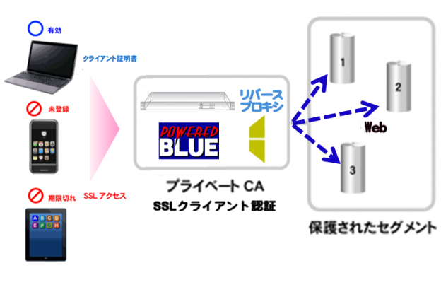 https://www.mubit.co.jp/pb-blog/wp-content/uploads/2020/09/web-ssl-rev-1.png