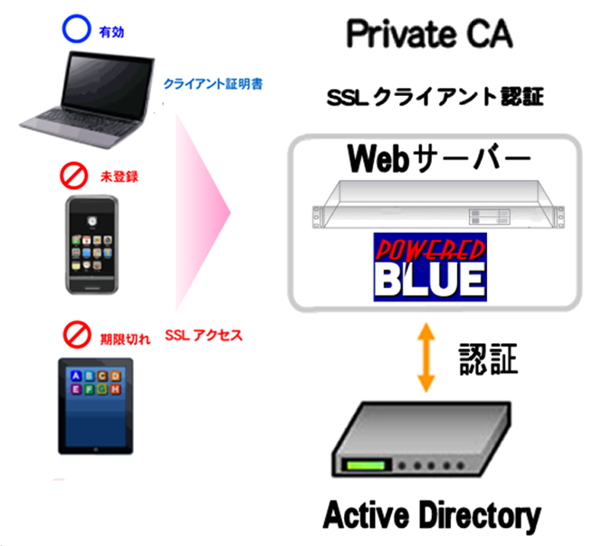 https://www.mubit.co.jp/sub/products/blue/img2/ad-ssl-1.png