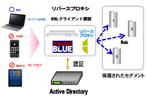 https://www.mubit.co.jp/sub/products/blue/img2/ad-ssl-rev-2.png