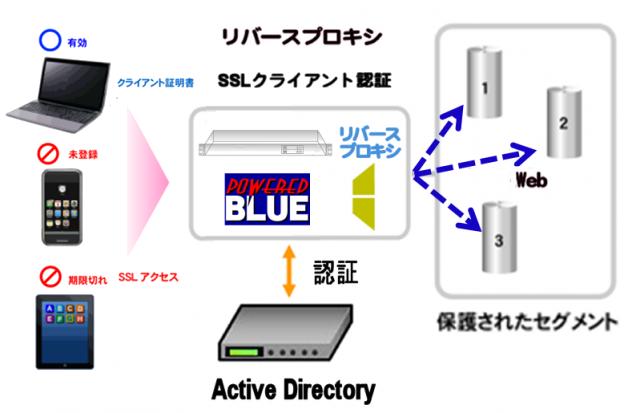 https://www.mubit.co.jp/sub/products/blue/img2/ad-ssl-rev-2.png