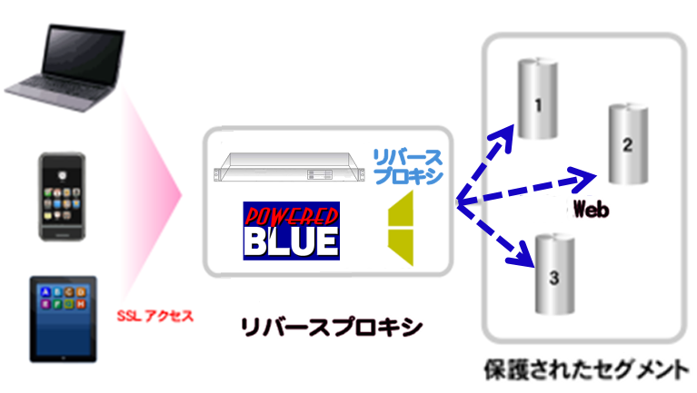 https://www.mubit.co.jp/sub/products/blue/img2/nor-rev-2.png