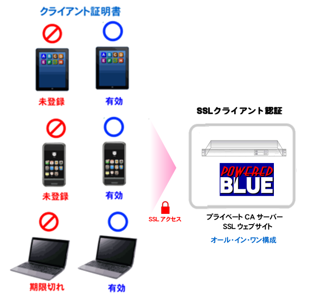 https://www.mubit.co.jp/sub/products/ca/img2/ca-ssl-allinone3.png